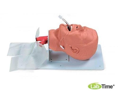 Бюджетный тренажер для отработки дыхательных путей