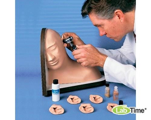 Имитатор обследования уха