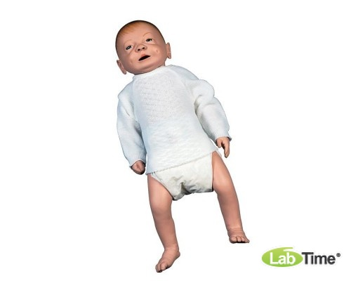 Модель по уходу за младенцем, мужская
