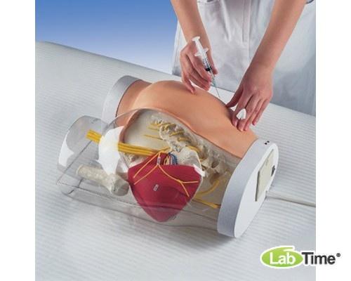 Тренажер «два в одном» для внутримышечных инъекций