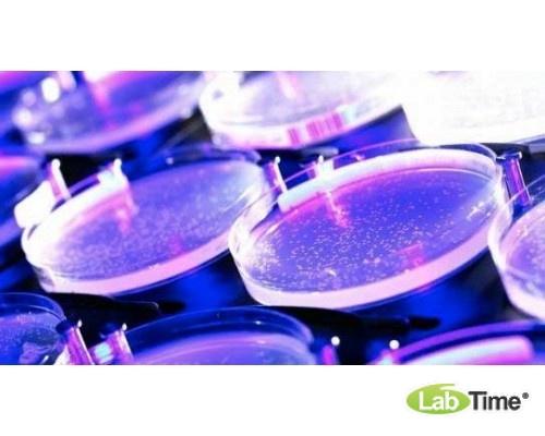Среда №13 ГРМ, (д/выявления сероводорода и определения ферментации лактозы, глюкозы, сахарозы), 250 г/пак