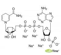 N1630 бета-Никотинамид аденин динуклеотид 2'-фосфат восстановленная тетранатриевая соль гидрат, ~95%, 100 мг (Sigma)