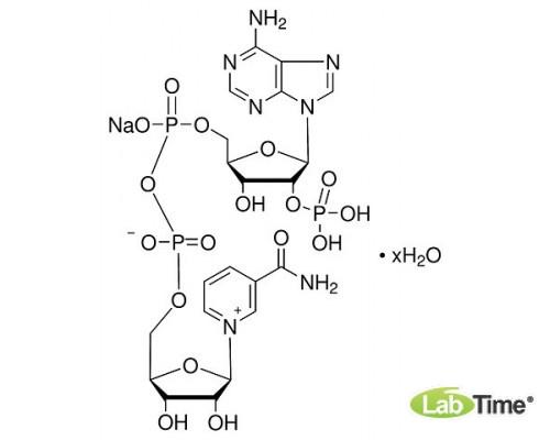 A1394.0250 b-Никотинамид аденин динуклеотид фосфат Na, мин. 97%, 250 мг (AppliChem)