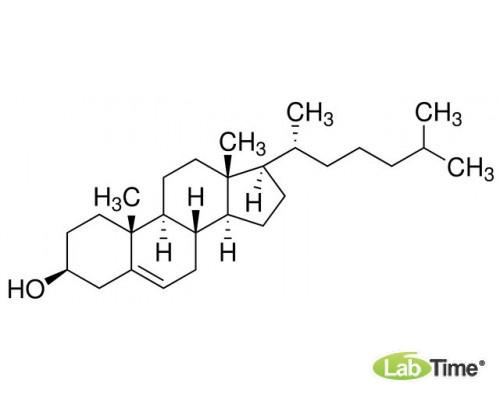A0807,0100 Холестерин, д/биохимии, мин. 95%, 100 г (AppliChem)