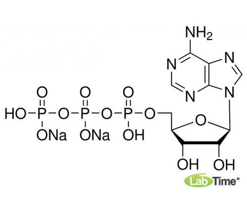 A1348.0005 Аденозин 5'-трифосфорной кислоты динатриевая соль, д/биохимии, мин. 98%, 5 г (AppliChem)