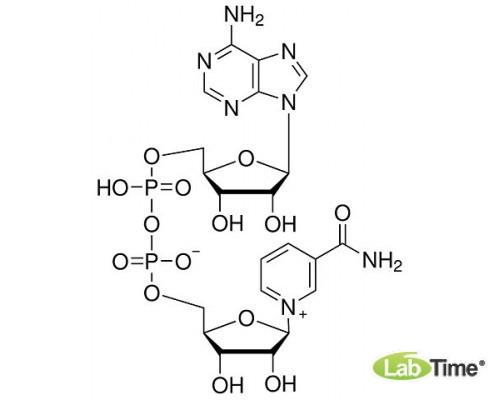 A1124.0005 b-Никотинамидадениндинуклеотид (НАД), 97%, 5 г (AppliChem)