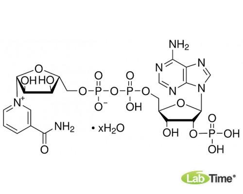0760 Никотинамид аденин динуклеотид фосфат (НАДФ динатриевая соль тригидрат), в окисленной форме, 500 мг
