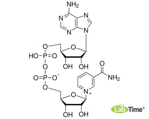 0455 β-Никотинамидадениндинуклеотид (NAD, окисленной форме), 10 г (Amresco)