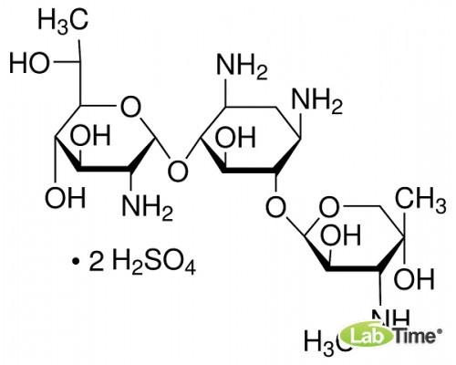 13200 Генетицин G-418 Сульфат, 1 г