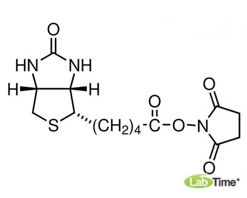 13315 Биотин-NHS, 250 мг