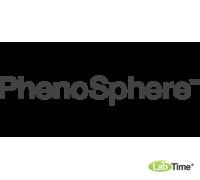 Колонка PhenoSphere-Next 3 мкм, C18, 30 x 4.6 мм