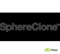 Колонка SphereClone 5 мкм, C6, 80A, 100 x 4.6 мм