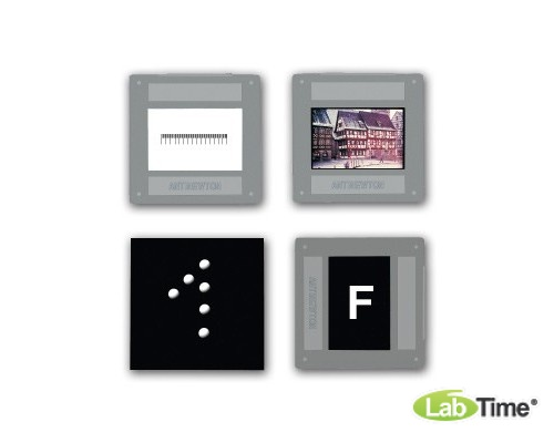 Набор из 4 слайдов с изображениями