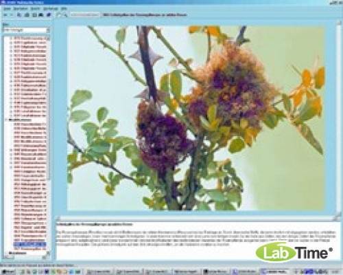 Программа «Сельскохозяйственные вредители и борьба с ними», на компакт-диске