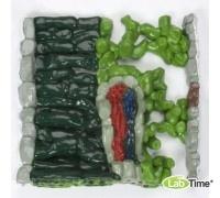 Рельефная модель строения листа